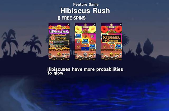 hibiscusrush